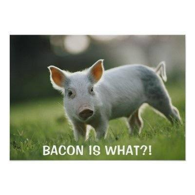 bacon is what