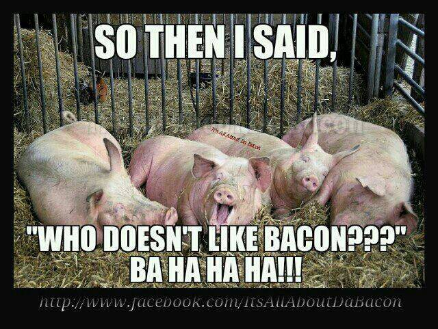 Chicken And The Pig Meme: Because Bacon Makes Everything Better