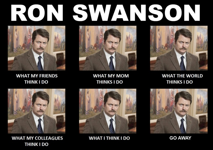 Ron Swanson What I do